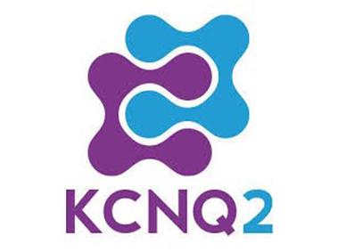kcnq2
